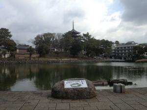 sarusawa0115_convert_20130115122710.jpg