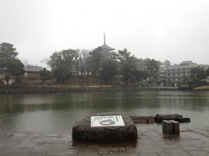 sarusawa0122_convert_20130122111529.jpg