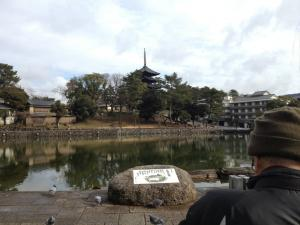 sarusawa0123_convert_20130123114321.jpg