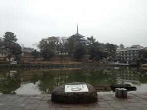 sarusawa0202_convert_20130202113224.jpg