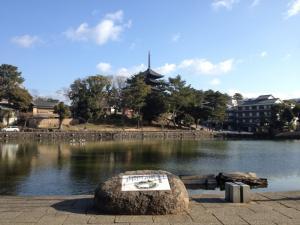 sarusawa0203_convert_20130203103509.jpg