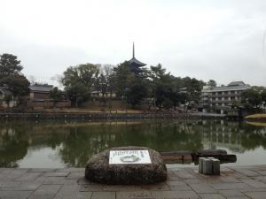 sarusawa0204_convert_20130204125523.jpg