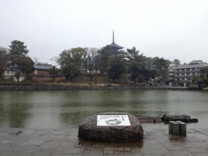 sarusawa0218_convert_20130218113805.jpg