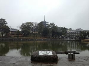 sarusawa0219_convert_20130219104228.jpg
