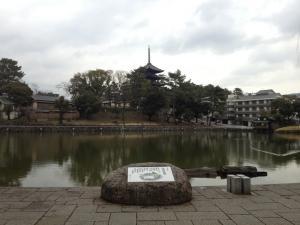 sarusawa0220_convert_20130220121452.jpg