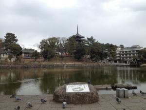 sarusawa0223_convert_20130223114012.jpg
