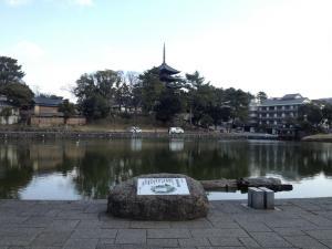 sarusawa0225_convert_20130225112555.jpg