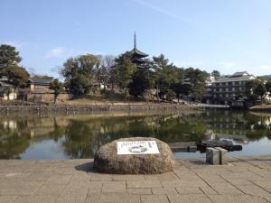 sarusawa0226_convert_20130226111139.jpg