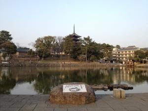 sarusawa0308_convert_20130308181906.jpg