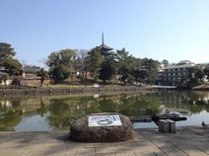 sarusawa0317_convert_20130317124138.jpg