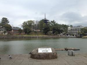 sarusawa0323_convert_20130323112709.jpg