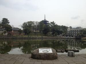 sarusawa0329_convert_20130329110411.jpg