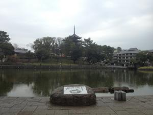 sarusawa0331_convert_20130331110925.jpg