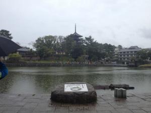 sarusawa0406_convert_20130406110944.jpg