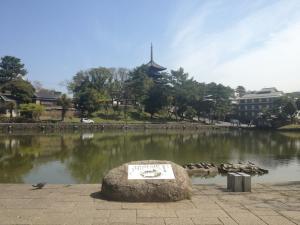 sarusawa0409_convert_20130409110158.jpg