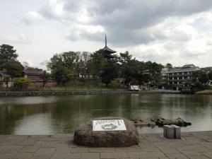 sarusawa0410_convert_20130410111508.jpg