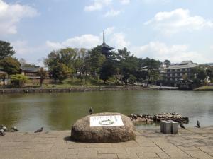 sarusawa0415_convert_20130415111705.jpg