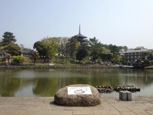 sarusawa0424_convert_20120424111622.jpg