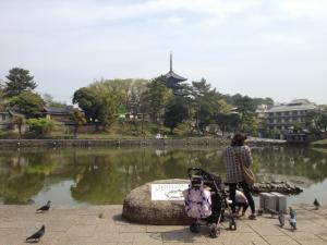sarusawa0425_convert_20120425110036.jpg