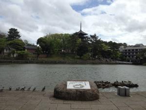 sarusawa0501_convert_20120501110425.jpg