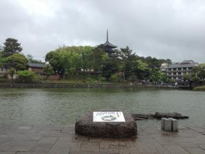 sarusawa0502_convert_20120502111518.jpg