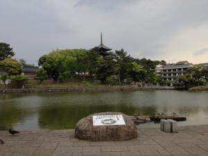 sarusawa0506_convert_20120506132206.jpg