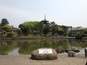 sarusawa0507_convert_20120507111509.jpg