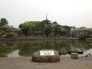 sarusawa0508_convert_20120508111218.jpg