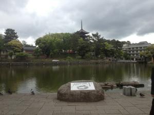 sarusawa0512_convert_20120512110408.jpg