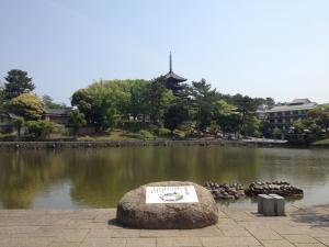 sarusawa0514_convert_20120514110219.jpg