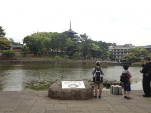 sarusawa0520_convert_20120520104903.jpg