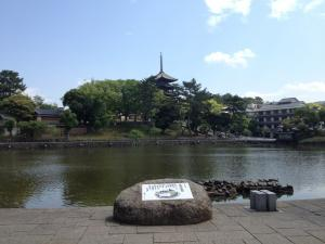 sarusawa0521_convert_20120521104630.jpg