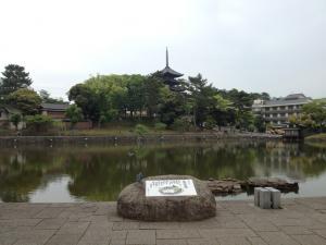 sarusawa0522_convert_20120522105852.jpg