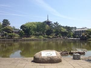 sarusawa0523_convert_20120523110736.jpg