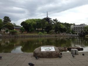 sarusawa0605_convert_20120605122118.jpg