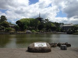 sarusawa0606_convert_20120606105112.jpg