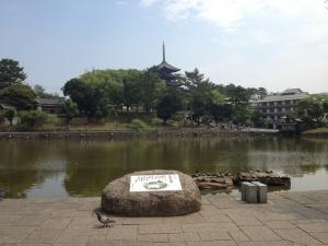 sarusawa0608_convert_20120608105237.jpg