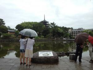 sarusawa0609_convert_20120609110701.jpg