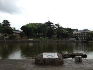 sarusawa0612_convert_20120612104635.jpg