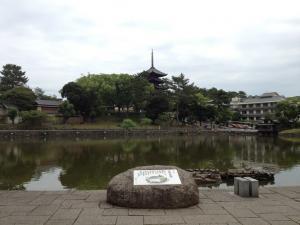 sarusawa0613_convert_20120613103633.jpg