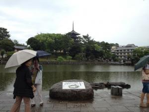 sarusawa0616_convert_20120616105031.jpg