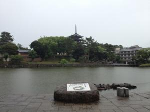 sarusawa0619_convert_20120619105824.jpg