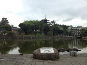 sarusawa0620_convert_20120620112600.jpg