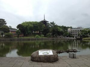 sarusawa0622_convert_20120622105405.jpg