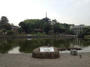 sarusawa0624_convert_20120624103339.jpg