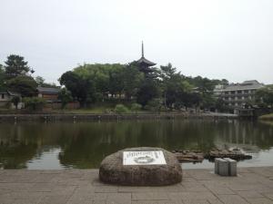 sarusawa0627_convert_20120627105208.jpg