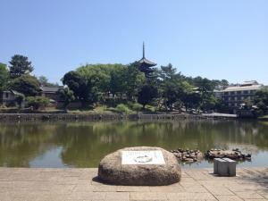 sarusawa0629_convert_20120629105437.jpg