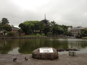 sarusawa0707_convert_20120707103643.jpg