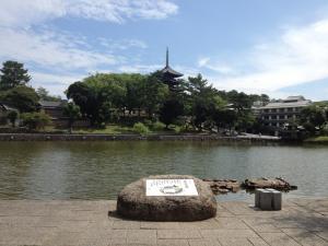 sarusawa0711_convert_20120711104611.jpg