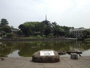 sarusawa0713_convert_20120713104230.jpg